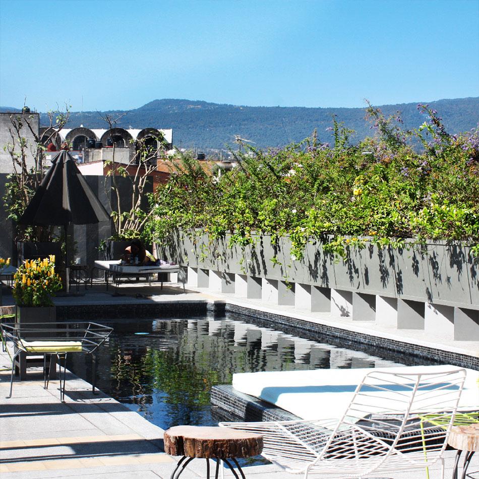Flor De Mayo Hotel Restaurant Cuernavaca Mexiko Verifizierte
